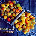 La mirabelle, ce fruit d'or de Lorraine