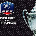 <b>Coupe</b> de <b>France</b>: Un trophée guidé par la professionnalisation malgré de belles histoires...