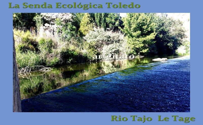 Senda Ecologica Toledo Tolède Chemin Ecologique du Tage Artgitato 9