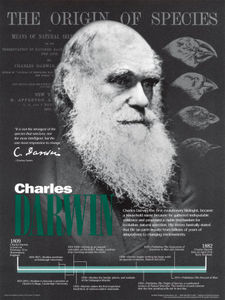 10098936A_Charles_Darwin_Posters