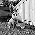 Critique Frankenweenie