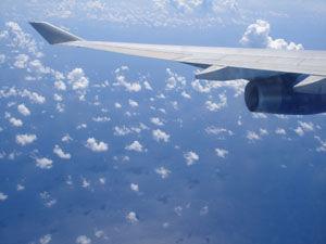 [WDW + Tourisme] Du 25 septembre au 11 octobre 2009 + WDW 2011 page 6 45249733
