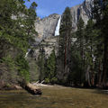 Into the wild : le parc national de Yosemite
