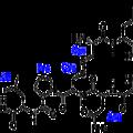 L'ocytocine : une hormone pour améliorer les contacts sociaux