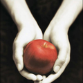 Fascination de Stephenie Meyer