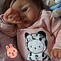 Nursery des bout'choux - bébés reborn à adopter