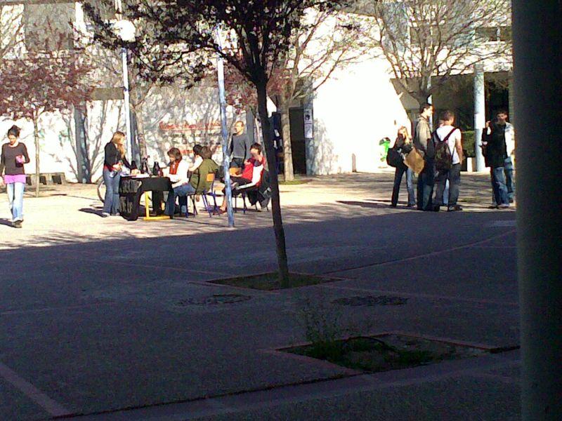 Et pendant ce temps à l'université de Perpignan... les bloqueurs prennent le soleil dans Pol-UPVD 37160456