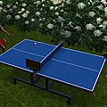 Blog du Tennis de Table Puymoyennais