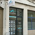 confluence immobilier lyon
