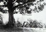 1957_roxbury_dress_white2_013_010_by_sam_shaw_1