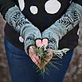 tricot d'h