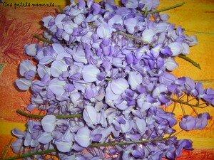 Beignets_de_fleurs_de_Glycine_1_copie