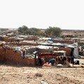 Violation des droits de l'Homme à Tindouf