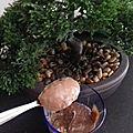 Crème <b>dessert</b> maison au Nutella