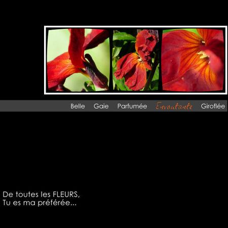 http://flaneuse.canalblog.com