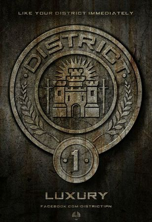 Hunger Games Affiche 1