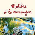 Mes premières critiques de la <b>rentrée</b> <b>littéraire</b>: Louise, Molière à la campagne, l'incertitude de l'aube
