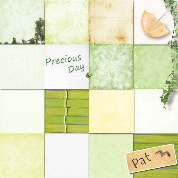 Pat_preview_PreciousDay_papiers