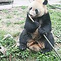 Mon carnet de voyage au Yunnan