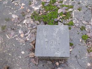 DSCF3222