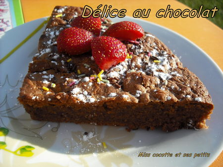 delice_au_chocolat6