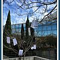 Projet I Learn Béziers : des poèmes et des arbres !