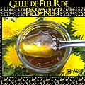 <b>Gele</b> de Fleur de Pissenlit