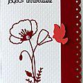Un coquelicot ... une colombe corail ... une carte d'anniversaire féminine <b>poétique</b> !!
