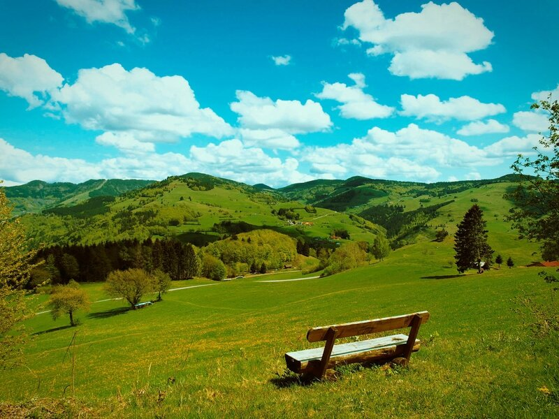 paysage_de_printemps_19