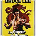La Fureur du Dragon (Les secrets de la boxe chinoise)