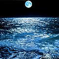 <b>Pleine</b> lune