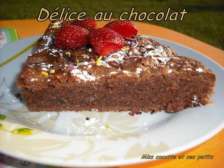 delice_au_chocolat5