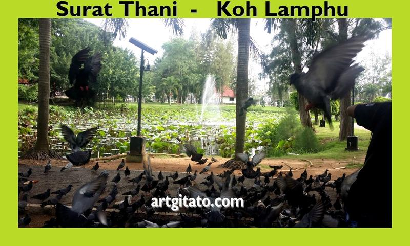 Surat Thani Thailande Artgitato 2 Île Koh Lamphu