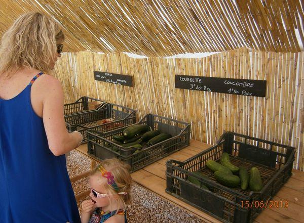 fruits légumes bio vente directe garéoult locavore paul keirn