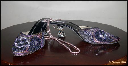 Chaussures_brillants