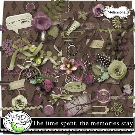 The time spent, the memories stay_preview