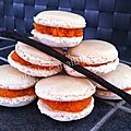 Macarons Vanille/Carotte