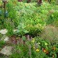 FLORADIANE jardin,cuisine,beauté: recettes nature et bio avec les plantes