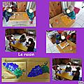 Le raisin en <b>coloriage</b>