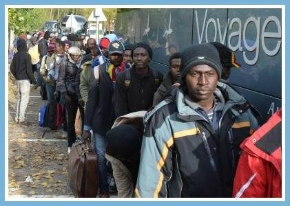 Migrants Calais bus