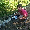 Elevage familial de lapins Papillon