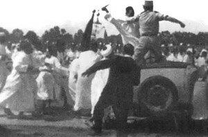 المغاربة يحتفلون بعيد الاستقلال 8275890_p