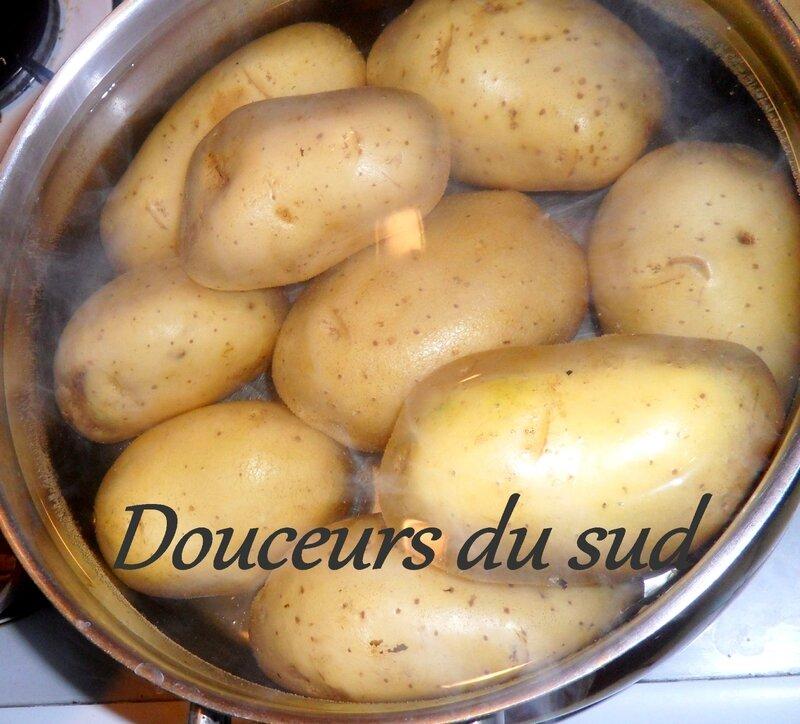 choux et pommes de terre 063