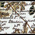 LOUBLANDE (79) ♣ LA SICARDIERE