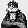 Albert Watson, <b>Monkey</b> Series
