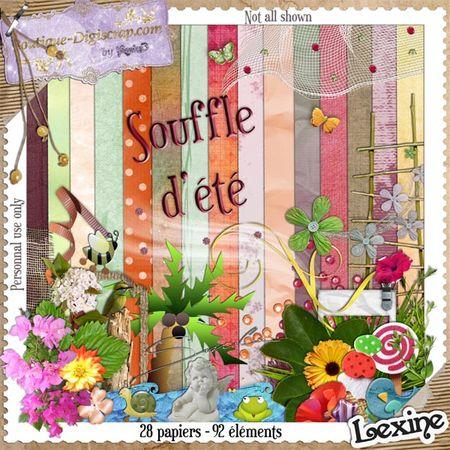 Preview_Kit_Souffle_d__t__LEXINE