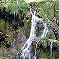 L'échappée jurassienne : une traversée sympa du Jura