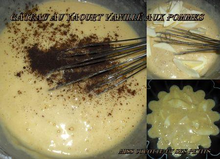 gateau_au_yaourt_vanill__aux_pommes1
