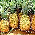 Vente Achat des fruits-Ananas!