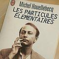 Les particules <b>élémentaires</b> de Michel Houellebecq